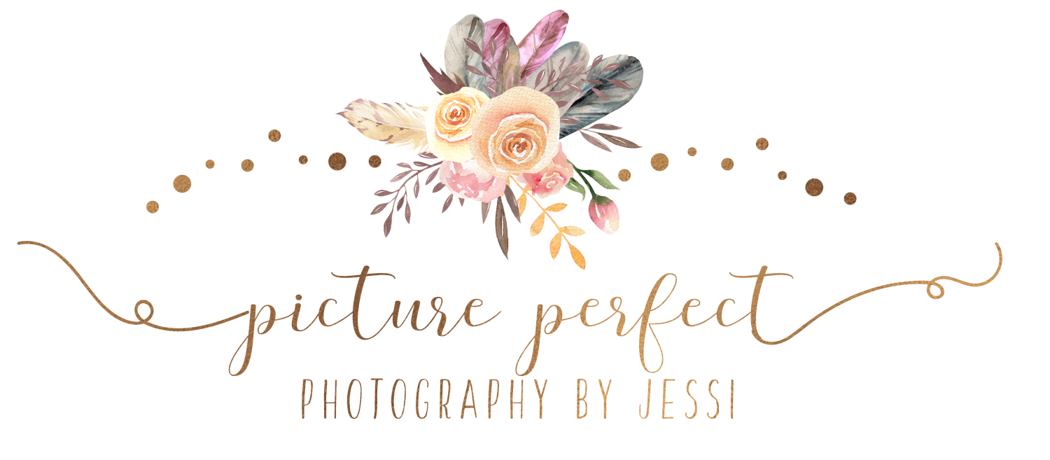 Picture Perfect Photography by Jessi Roanoke, Va (336)339-5683